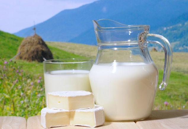 141681_milk5